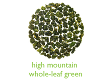 high-mtn-green-port