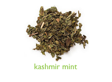kashmir-mint-port